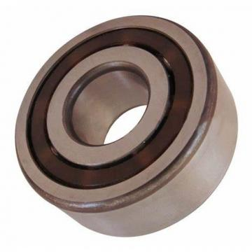Stainless Steel Double Row Deep Groove Ball Bearing 4205